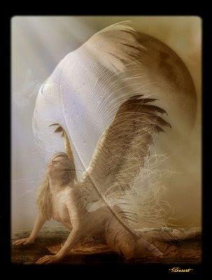 Piume d'angelo