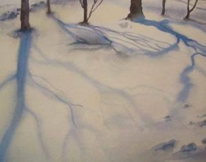 Ombre su neve