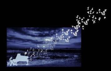 Musica di notte